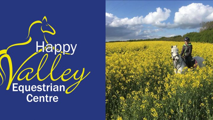 New Happy Valley Equestrian Centre website